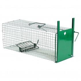Boîte à rat et fouine 1 entrée