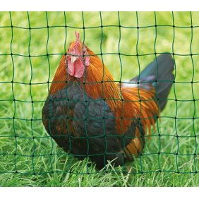 Filet poules et poulets non électrique double pointes Kerbl