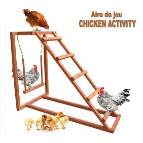 Aire de Jeu balançoire Chicken Activity