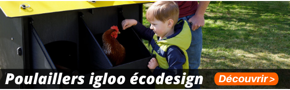Poulaillers igloo écodesign