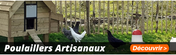 Poulaillers artisanaux